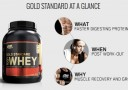 Jual ON Whey Gold
