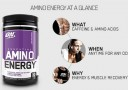 Suplemen ON Amino Energy
