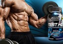 Suplemen Muscletech Test HD