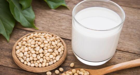 Susu Kacang Kedelai Sumber Protein Nabati
