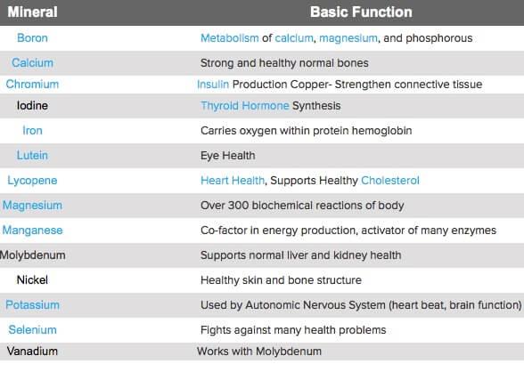Jenis dan Fungsi Mineral