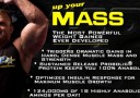 MHP Up Your Mass Banner