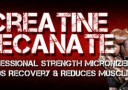 musclemeds amino decanate banner