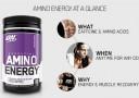 Suplemen ON Amino Energy