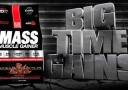 Elite Labs Gainer 20lbs